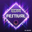 DJ Alvin - EDM Festival