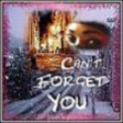 Can*t Forget You